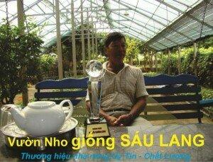 Nho sạch Sáu Lang – Thương hiệu Nhà Nông Việt