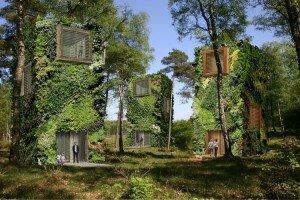 Nhà cây giữa rừng