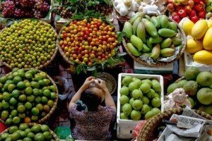 Tham gia TPP, nông sản Việt có cơ hội lớn trong 5 lĩnh vực