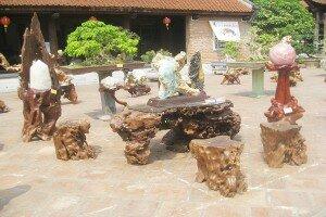 Tìm hiểu về thú chơi gỗ lũa và cây khô nghệ thuật
