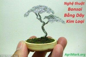 14 tác phẩm bonsai mini bằng dây kim loại đẹp mê hồn