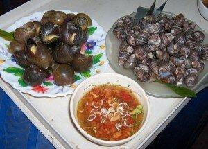 19 món ốc ngon – sống trên đời cần phải ăn thử