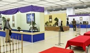 Thưởng ngoạn nghệ thuật tại triển lãm cây cảnh Nippon
