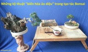 """Những kỹ thuật """"biến hóa ảo diệu"""" trong tạo tác Bonsai"""