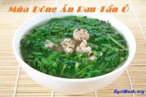 Vì sao nên thường xuyên cho gia đình ăn rau Tần Ô vào mùa đông?