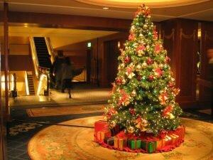 Tại sao ngày Noel lại dùng cây thông mà không phải là cây khác?