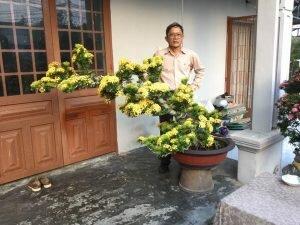 Nghệ nhân chia sẽ kinh nghệm về chăm sóc cây Trang